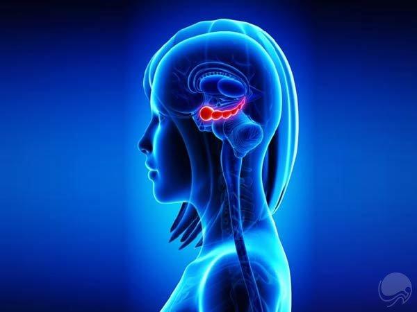 چند ترفند شگفت انگیز در بازی با مغز!